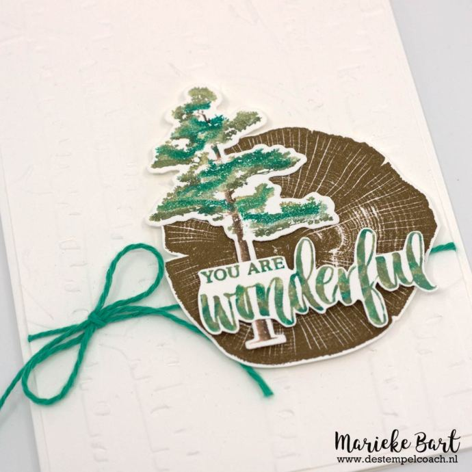 Stampin' Up! Rooted in Nature Stamp Set and Nature's Roots Dies