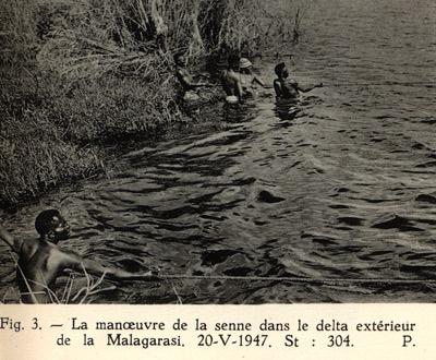 Pêche à la senne manoeuvre dans le delta de la Malagarazi Tanzanie.