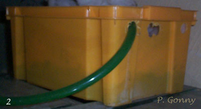 filtre d'aquarium en caisse.