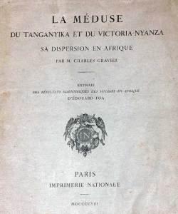 Espèce rare du Tanganyika | la Limnocnida tanganicae | la meduse du lac | tanganicae .