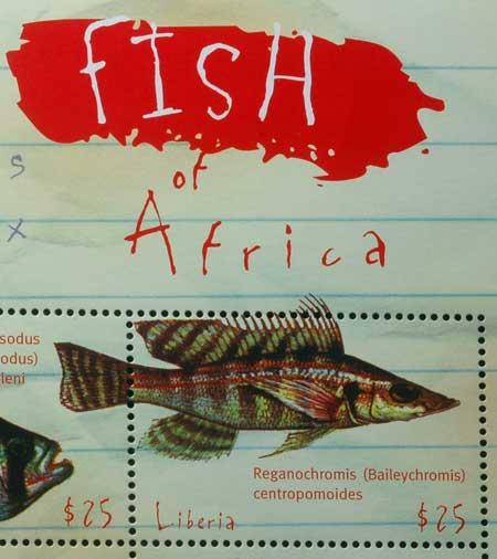 Planche de timbre du Liberia, Baileychromis centropomoides.