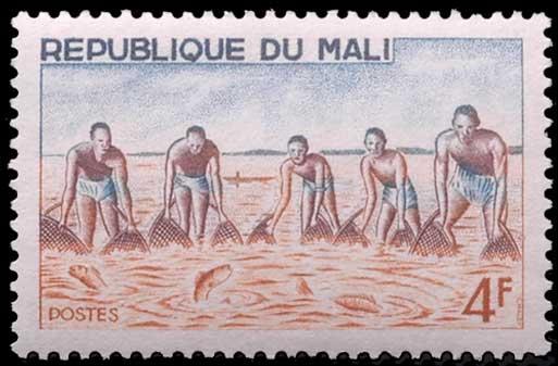 Pêche à l'épuisette au Mali.