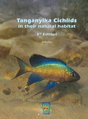 Tanganyika Cichlids in their natural habitat (3)