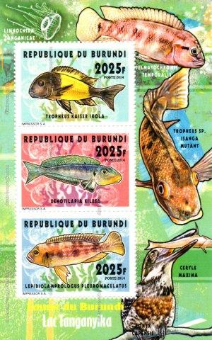 Biodiversité aquatique Burundi