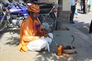 Jours 73 à 75 : Jaipur… ou contre ?