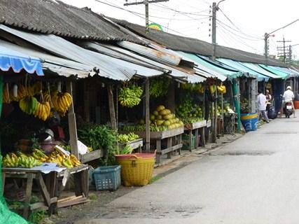 Jour 100 : Quelques heures en transit à Trang…