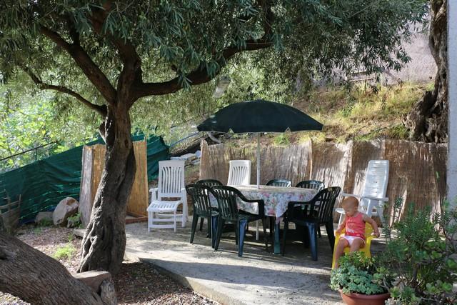 La terrasse du bas, à l'ombre d'un olivier