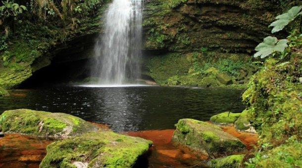 Photo d'une cascade naturelle située au cœur du Parc naturel national Cueva de los Guácharos