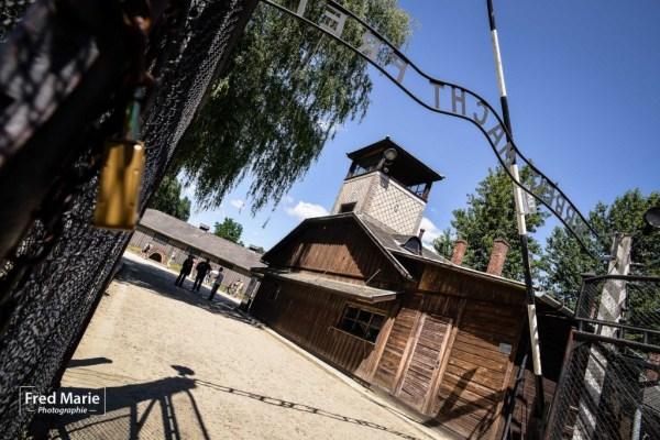 Sujet Auschwitz-4