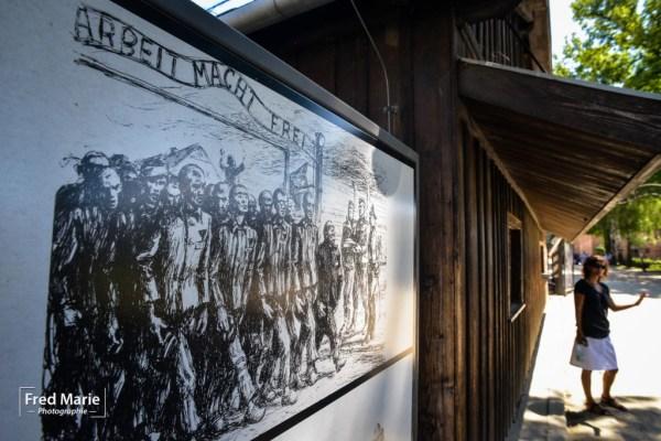 Sujet Auschwitz-5