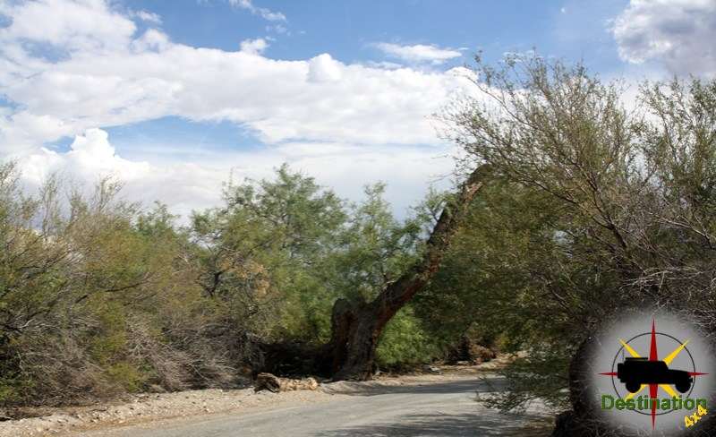 Mesquite Springs Campground located near Scotty's Castle in Death Valley