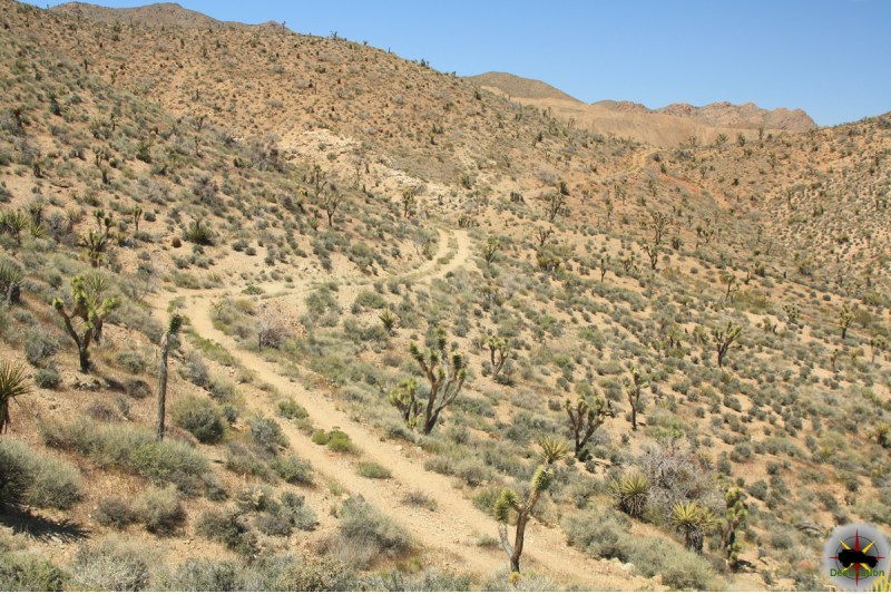 A remote side road leading a old mine site in the Ivanpah Mountains near the Morning Star Mine.