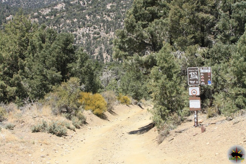 Jacoby Canyon 3N61 Trail head