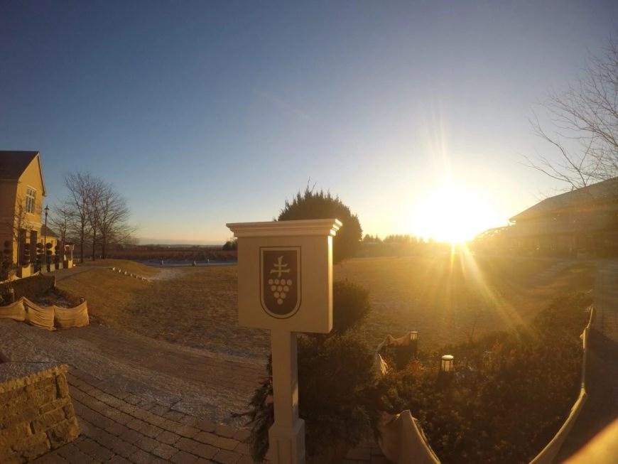 Sunset over Peller Estates Vineyards