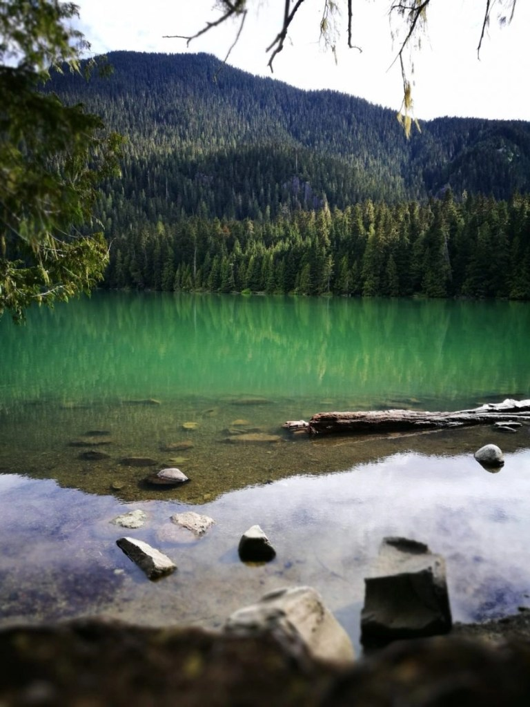 At one with nature whilst hiking Cheakamus Lake, Hikes in Whistler, Canada