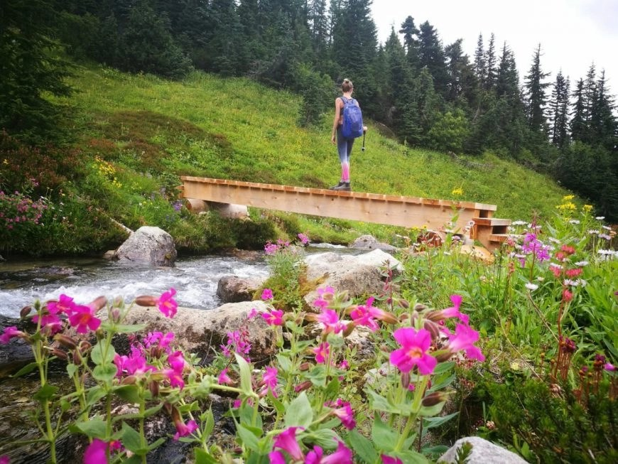 Whistler hiking trails - Wandering across rivers & meadows