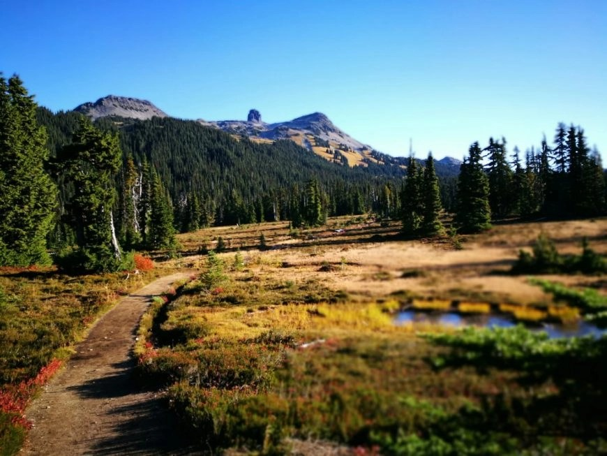 """Destination Addict - Early morning views of """"Black Tusk"""" & the surrounding mountains, near Whistler, British Columbia, Canada"""