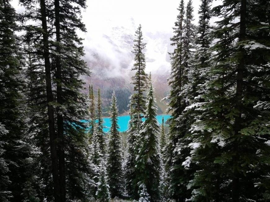 Destination Addict - On the way up to Eiffel Peak at Moraine Lake, Alberta, Canada