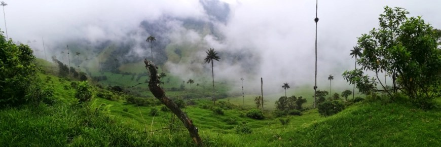 Enjoying views over the Cocora Valley, Salento, Colombia