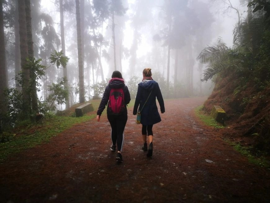 Destination Addict - Walking back down through the cloud forest, Salento, Colombia