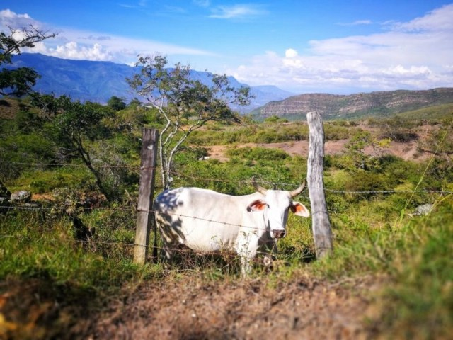 Complete Camino Real Adventure - Off The Beaten Path In Colombia - Destination Addict
