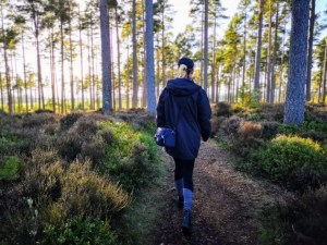 Strolling through Camore woods at sunset, near Dornoch - NC500 - An Epic Itinerary For Scotland's North Coast- Destination Addict