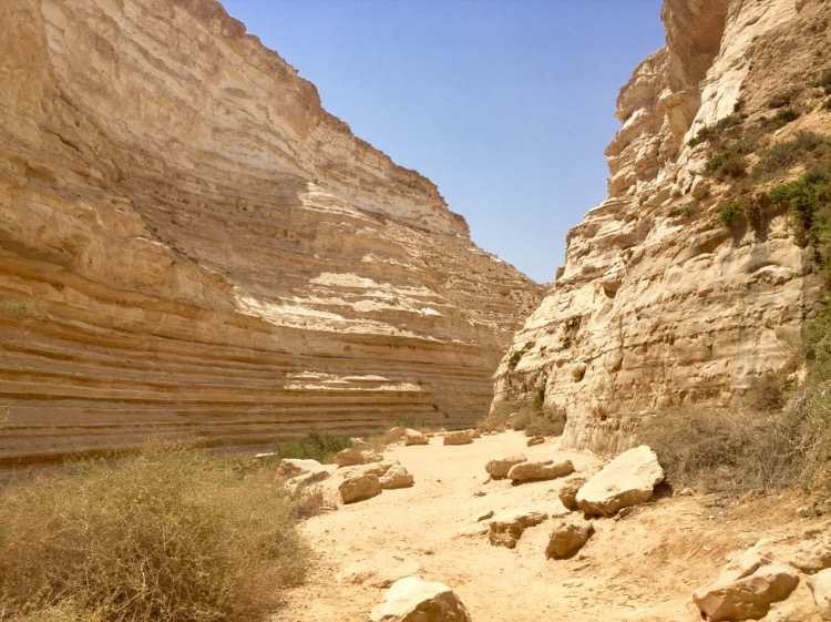 Exploring the Negev