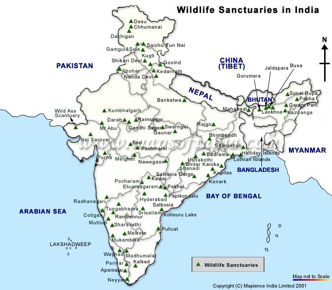 wildlife sanctuaries in india के लिए चित्र परिणाम