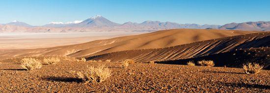 Puna au Nord du salarié de Arizaro - Argentine