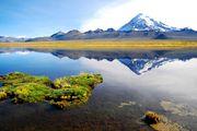 Le volcan Sajama (6542m) est le plus haut sommet de Bolivie