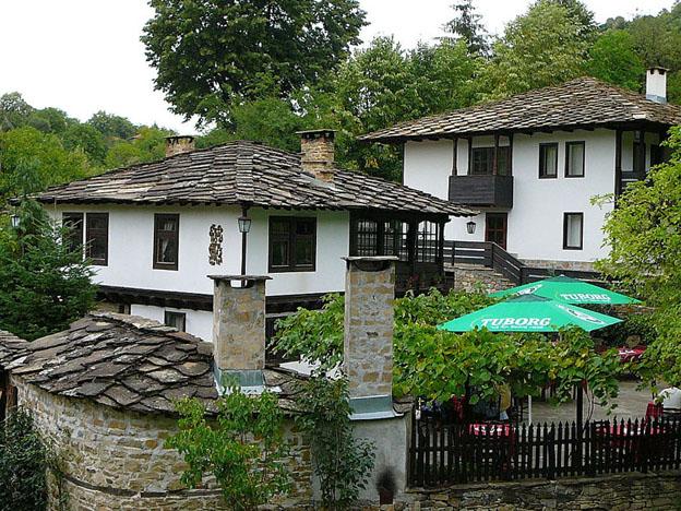 Foto de Elena Chochkova, august 2008, sursă Wikipedia.