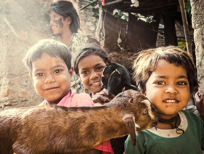 Kids posing together with their goats