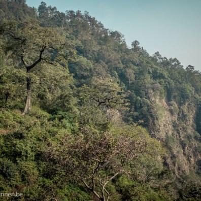 View from Neergarh waterfall