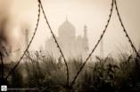 Barbed wire at Taj Mahal