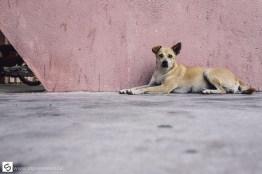 Street life in Nha Trang