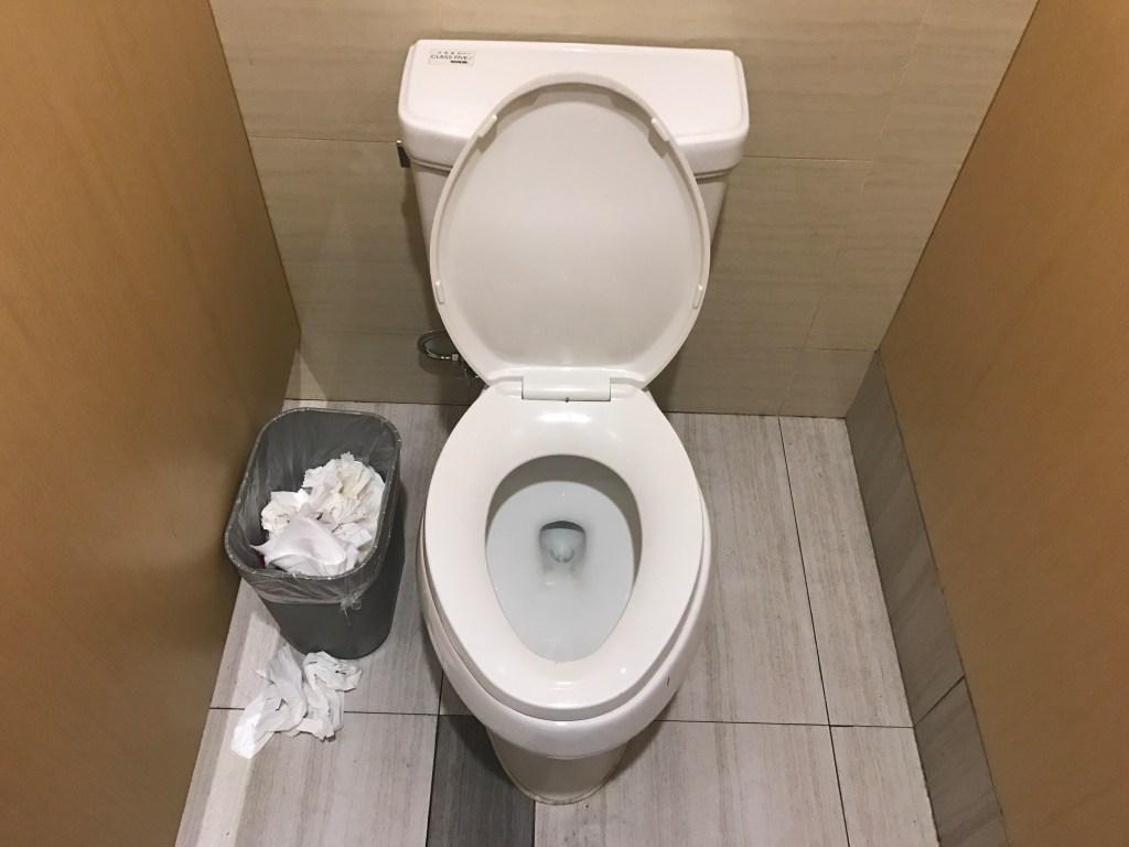 Você precisa de papel higiênico na China Privada e lixeira na China