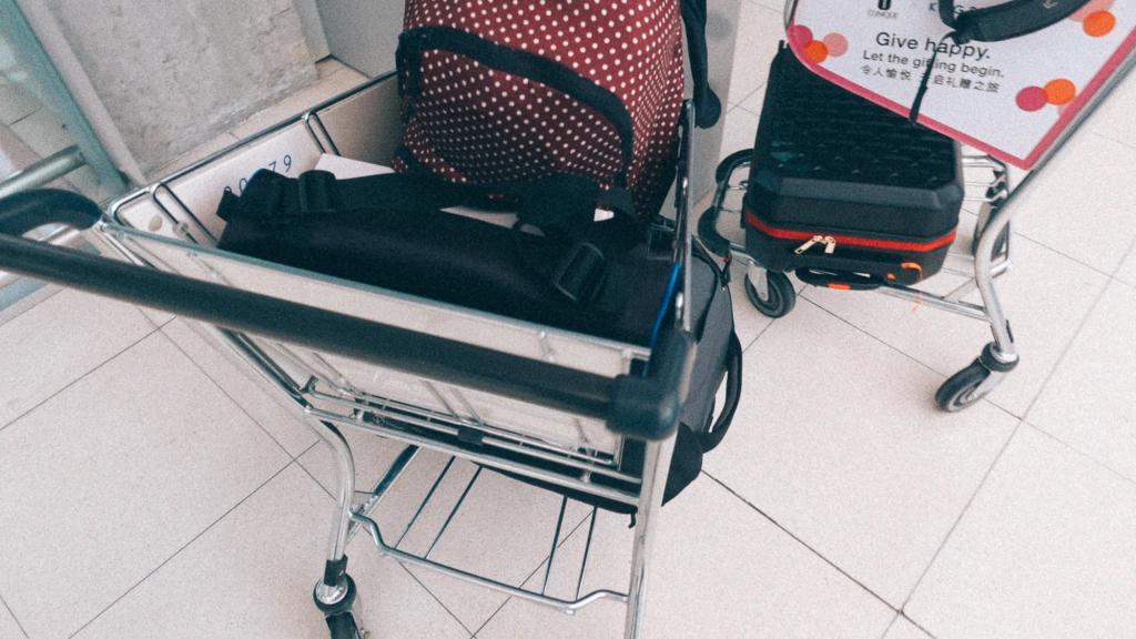 3 dicas para lucrar mais com sua importadora Imagem de carrinho carregando bolsas de viagem