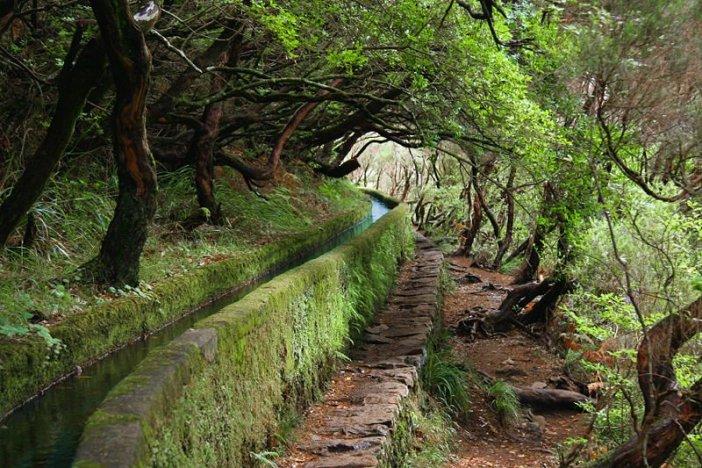 Levadas e veredas da Madeira