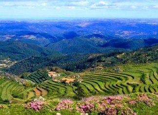 Serra de Monchique – O Mar no Horizonte