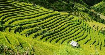 Paisagens do Vietname