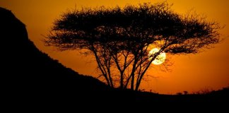 Por do sol no Quénia