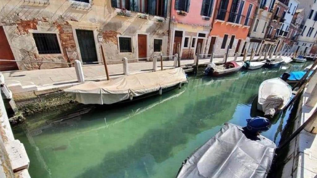 Canais de Veneza cristalinos