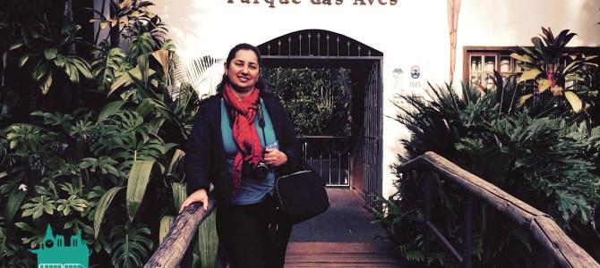 Foz do Iguaçu – Parque das Aves: animais, plantas e índios