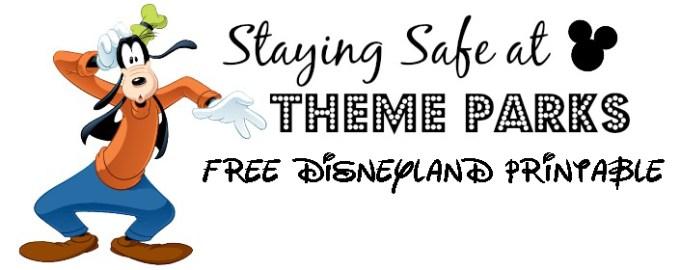 theme-park-safety-tips-dsm-