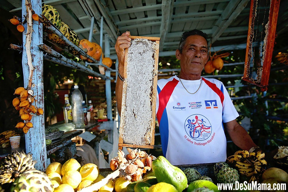 Traditional Cuban Culture: Fruit Stands En Route to Trinidad, Cuba