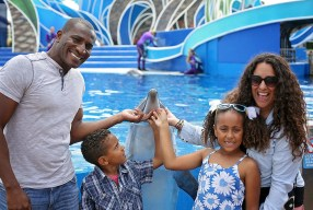 So Many Reasons To Feel Good About SeaWorld This Summer