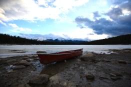 Pyramide Lake Jasper