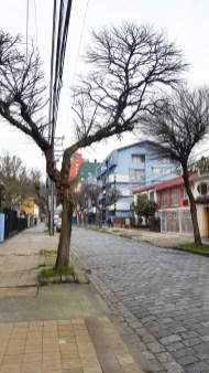 Auslandssemester Chile
