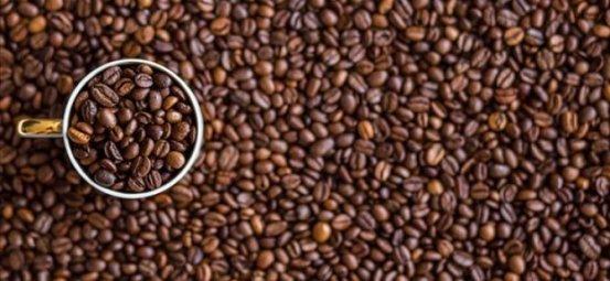 Ένας παλιός τύπος καφέ που δεν θα επηρεαστεί από την κλιματική αλλαγή που βρέθηκε στη Δυτική Αφρική