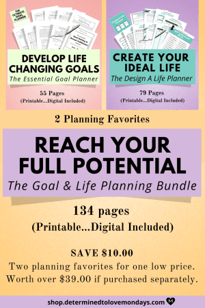 Life and Goal Planner Bundle